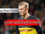 Erling-Braut-Haland_head